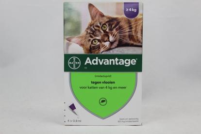 Advantage+kat