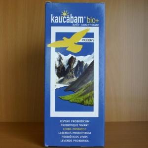 Kaucabam